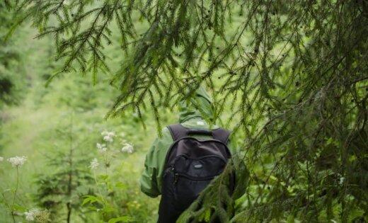 Несмотря на дождь, в лесах Латвии высокая пожароопасность