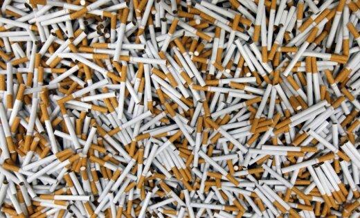 VID anulē licenci nelegālu cigarešu ražotnei Rēzeknē