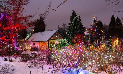 ФОТО: 30 тысяч лампочек или Рождественская сказка в одном из домов Пардаугавы