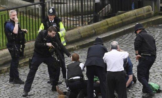 Поделу отеракте встолице Англии схвачен очередной подозреваемый