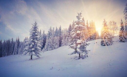 Сегодня самый короткий день вгоду, наступает зимнее солнцестояние
