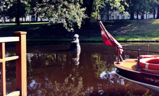 Aculiecinieka foto: Rīgas kanālā parādījies ūsains ronis