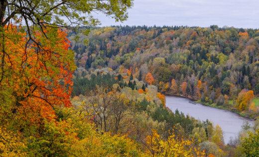 Lapkritis Latvijā: Atsūti savu zelta rudens foto!