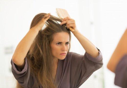 Тонкие и ломкие: трихологи рассказали о причинах выпадения волос