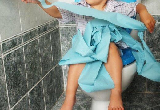 Игра Размотай Туалетную Бумагу