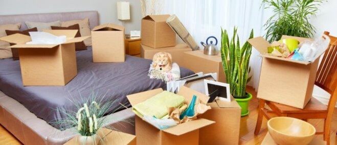 Tikko ievākušies: ar ko sākt un ko atlikt mājokļa iekārtošanā