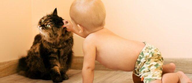 Kas jāņem vērā, kad ģimenē ar četrkājaino draugu ienāk bērns