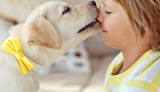 10 вещей в поведении вашей собаки, которые трудно объяснить (но мы попробуем)