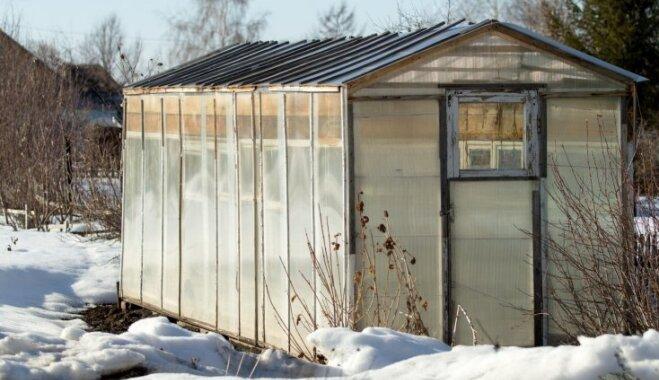 Izmērs, materiāls un novietojums – kā izvēlēties siltumnīcu vairākām sezonām