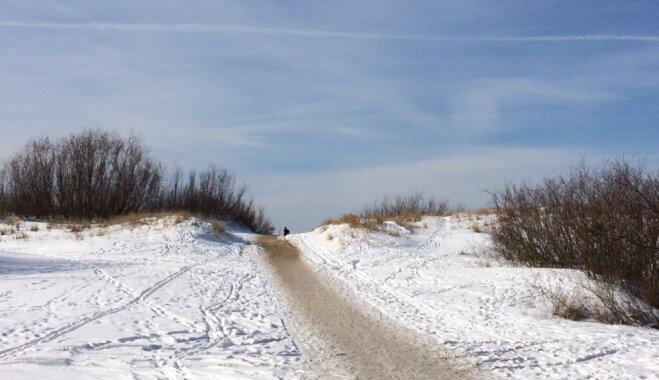 Ideja brīvdienu pārgājienam tepat Rīgā: Izziņas taka Daugavgrīvā