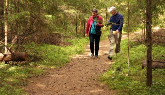 Прогулки по Южной Эстонии: 5 причин посетить природные тропы Таэваскода