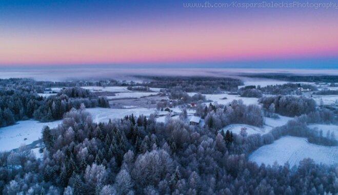 ФОТО. Игры цвета и снежные леса: восход солнца в Приекуле