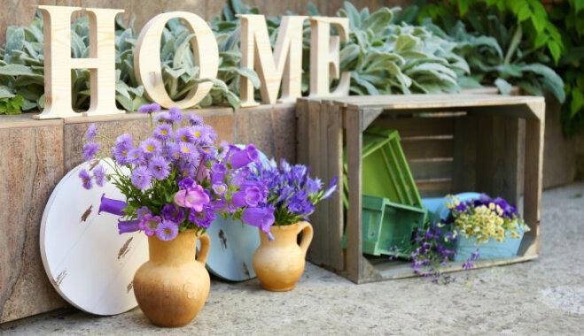 Теплолюбивые гости. Топ-10 садовых растений, желающих перезимовать у вас дома