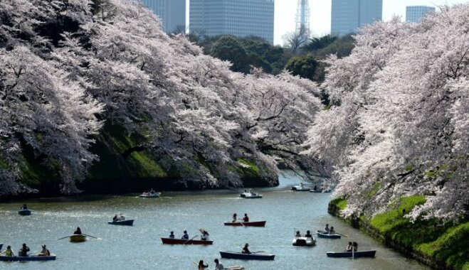 Мир для одного: 5 лучших городов для путешествующих в одиночку