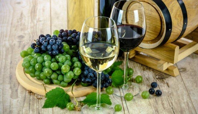 В гостях у Диониса: 6 лучших винных регионов Европы