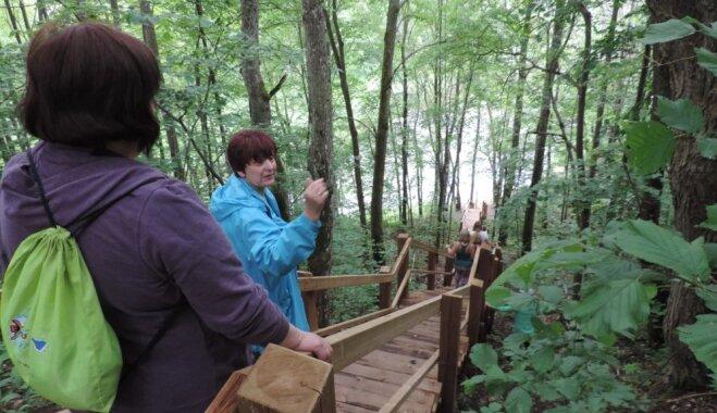 Скалы, родники и природные тропы Видземе: 6 маршрутов для отдыха на природе