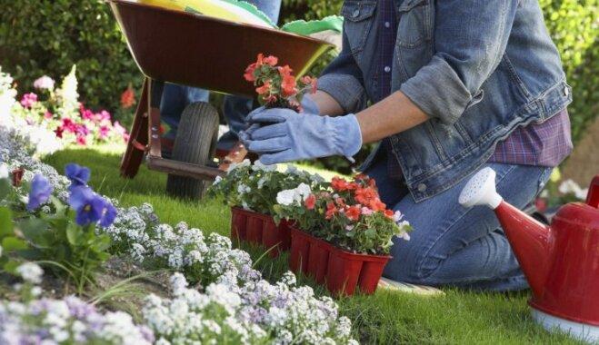 Лунный календарь для садовых работ на 21-27 мая 2018 года