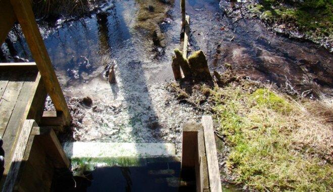 ФОТО. Серные источники Зушу в Моресской волости, куда раньше ездили на серные и грязевые ванны