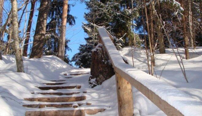 Valkas novada pērle – Lustiņdruvas dabas taka