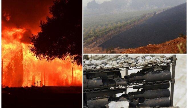 Vīndari izmisumā: Kalifornijas ugunsgrēki posta Napas un Sonomas ieleju vīna dārzus