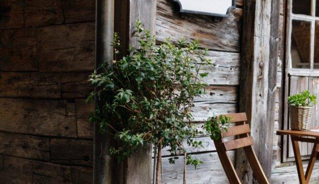 О чем стоит задуматься перед покупкой старого дома
