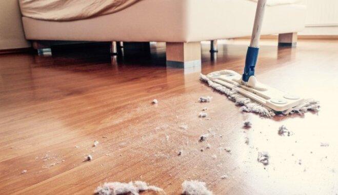Putekļu dienas rokasgrāmata: praktiski ieteikumi dažādu sarežģītības pakāpju tīrīšanai