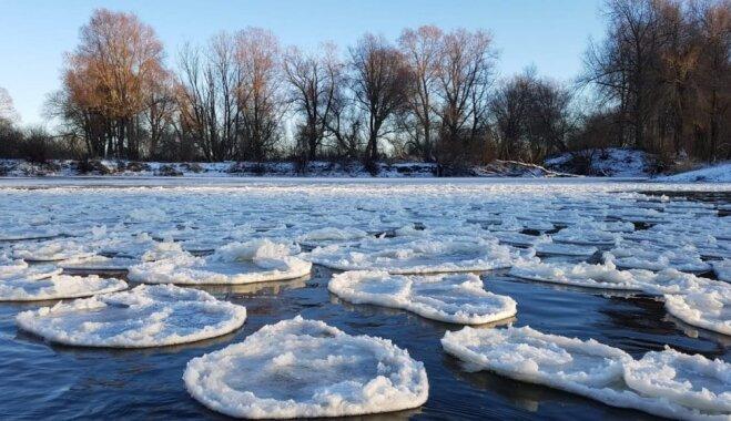 Foto: 'Ledus pankūciņas' – neparastais dabas brīnums pie Aiviekstes slūžām
