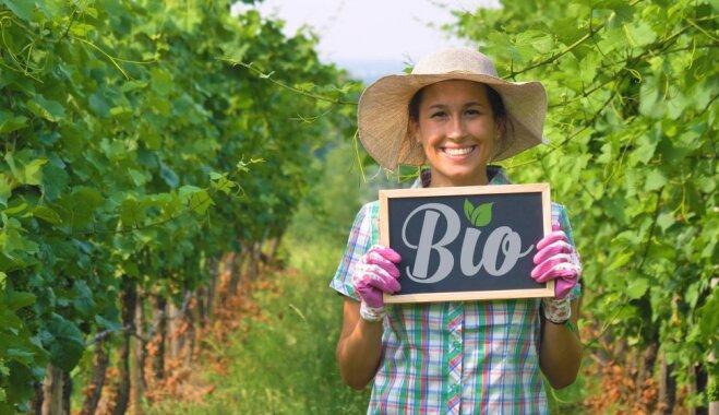 Ищем экологически чистые продукты в Риге: 7 магазинов здорового питания