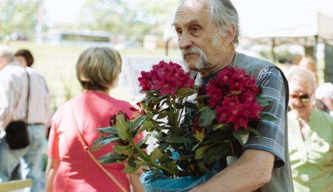 Stādu dienas Jelgavā: rozes izvēlas tāpat kā sievietes – skaistāko ņem sev
