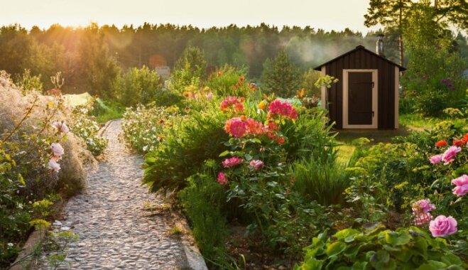 Dzīvoklis, māja un pat sauna dažos kvadrātmetros – neticami mazas telpas ar visām ērtībām