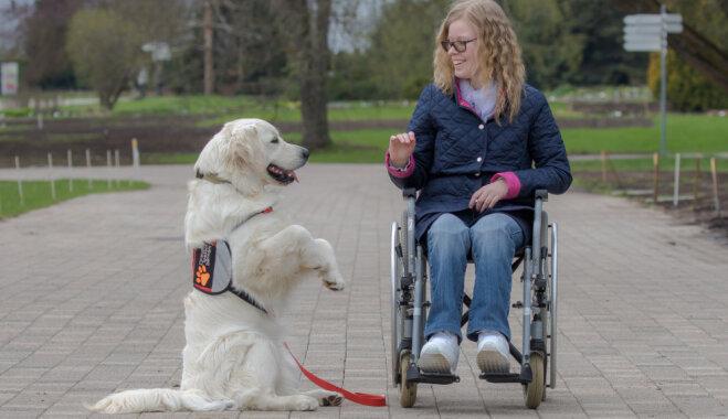 22.septembrī klātienē varēs iepazīties ar suņu terapiju - kaniesterapiju