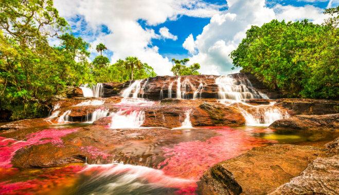 Sulīgais krāsu sprādziens – iespējams, skaistākā upe pasaulē