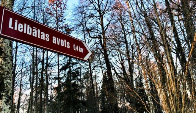 ФОТО: Крупнейший в Латвии чистый родник — источник Лиелбатас
