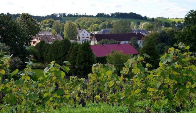Aicina uz 19. Sabiles vīna svētkiem