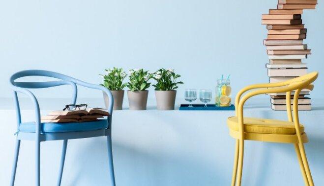 Interjera uzfrišināšana: vienkārši un glīti istabas dekori