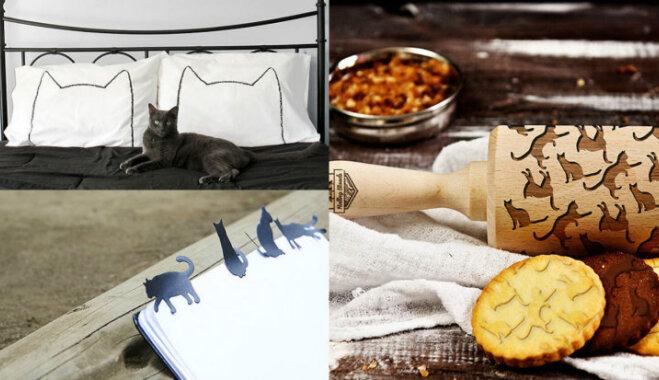 Kā svētkos pārsteigt kaķu mīli? Oriģinālas dāvanu idejas