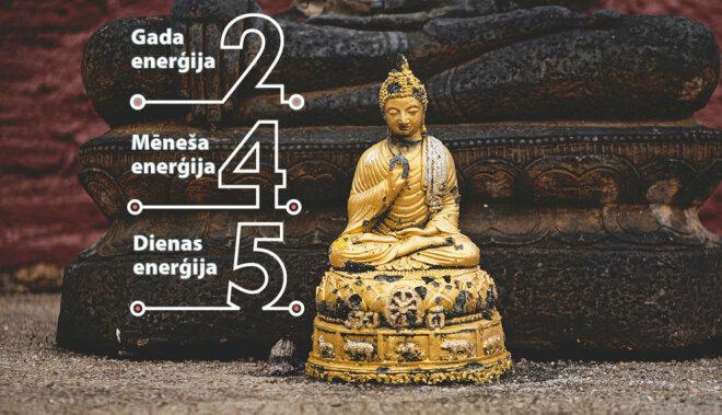1. februāra numeroloģiskais fons