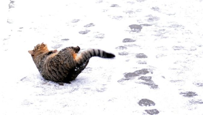 Slapjš sniegs un nelieli 'mīnusi' pirmdien padarīs ceļus slidenus