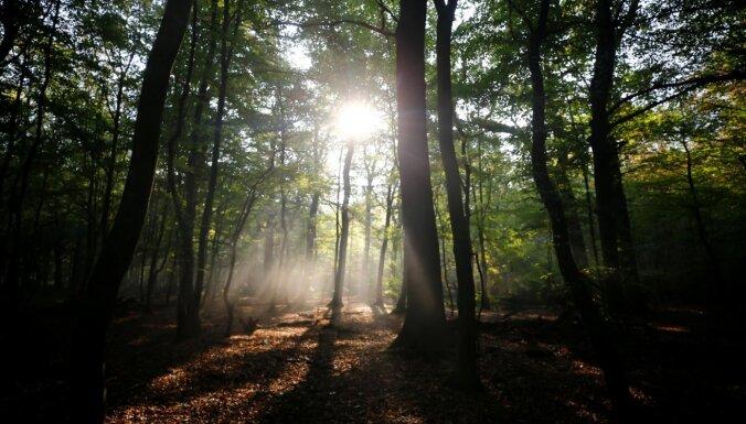 Vācijas mežā atrasts paslēpts padomju spiegu radio