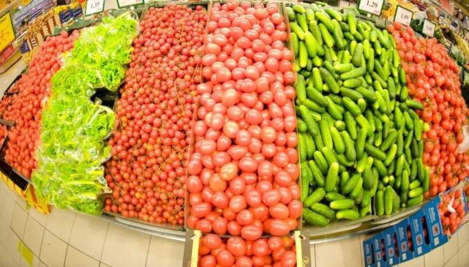 Sāks tirgot pirmo Latvijā audzēto salātu ražu