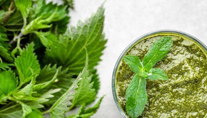 Nezāles smūtijos! Kādus augus pievienot pavasara zaļajam dzērienam