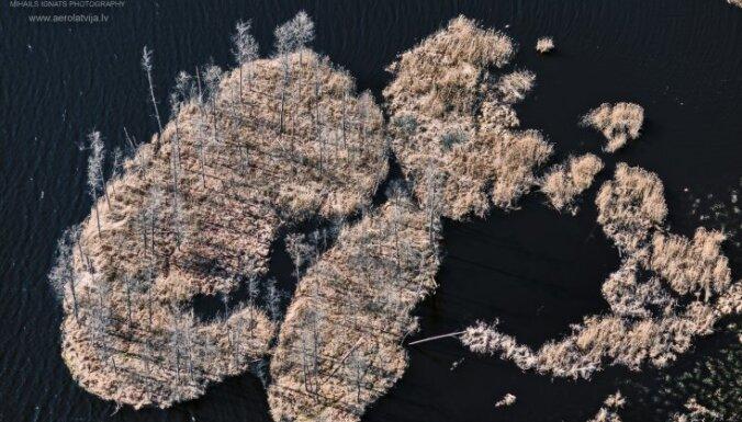 Kā no putna lidojuma: Ungurpils dzirnavu ezera peldošās salas
