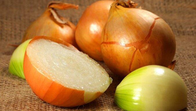 Азбука кухни. Пять сортов лука: как и для чего их лучше использовать