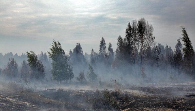 В Карсавском крае горит торфяное болото, ветер разносит огонь в сторону леса