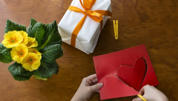 Kā uztaisīt Valentīndienas pārsteigumu ar bērnu. Un citas aktivitātes februārī