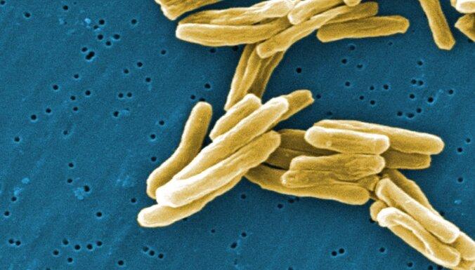 Cīņa pret Covid-19: pēta 100 gadus senas vakcīnas efektivitāti
