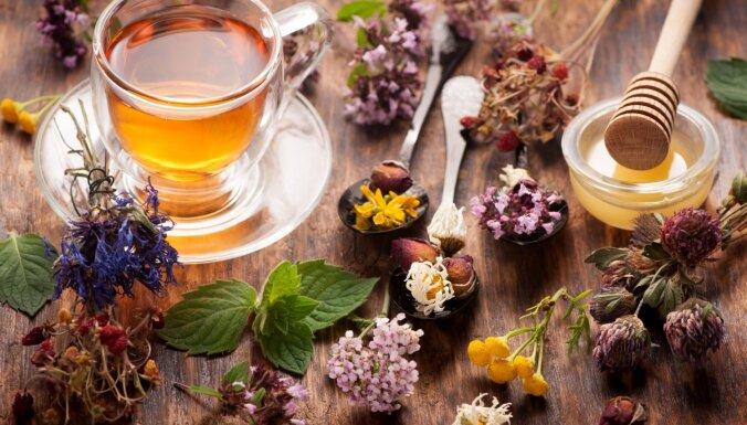Зачем и как правильно пить очищающие травяные чаи