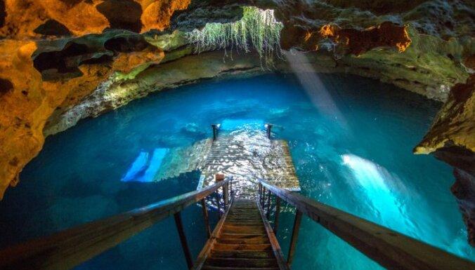 Velna ala Floridā – lieliska vieta, kur izzināt zemūdens pasauli