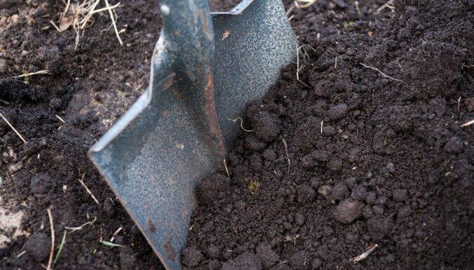 Sporta pils mazdārziņu projektā noslēgti 140 līgumi ar pagaidu dārzu īrniekiem
