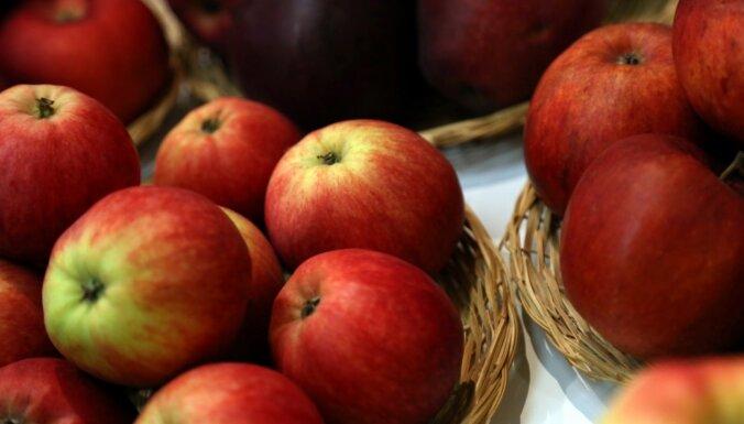 Soctīklotāji sašutuši par RPP rīcību, neļaujot sirmgalvei tirgot ābolus; policija nesoda